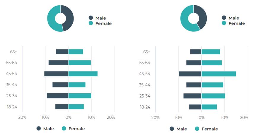 Visitor Demographics Q1 2021 vs Q1 2020